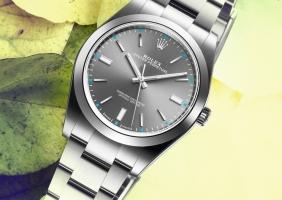 단 하나의 시계만 갖는다면? 롤렉스 오이스터 퍼페츄얼 39